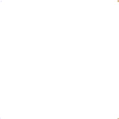 happy-duck-web-post-facebook-montage-video-effet-beau-soleil-restaurant-design-graphique-saveurs-restaurant-fondue-vin-blanc